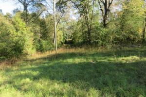 Copiah County hunting property in Copiah, MS (5 of 30)