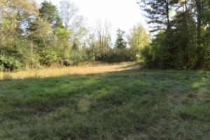 Copiah County hunting property in Copiah, MS (6 of 30)
