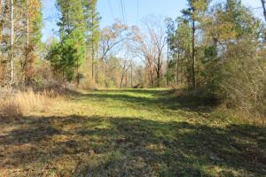 Copiah County hunting property in Copiah, MS (21 of 30)