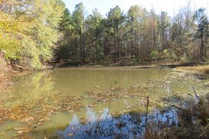Copiah County hunting property in Copiah, MS (26 of 30)