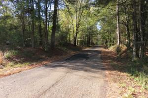 Copiah County hunting property in Copiah, MS (15 of 30)