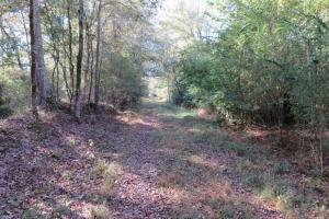 Copiah County hunting property in Copiah, MS (9 of 30)