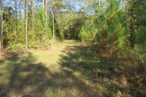 Copiah County hunting property in Copiah, MS (10 of 30)