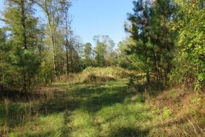 Copiah County hunting property in Copiah, MS (11 of 30)