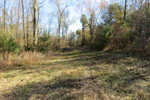 Copiah County hunting property in Copiah, MS (25 of 30)