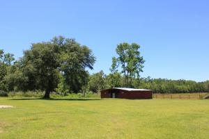 National Forest 40 Acre Farm - Berkeley County SC