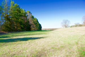 HWY 304 - Home and Acreage - DeSoto County MS