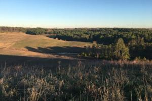 Hogue Creek  Hunting Land - Jackson County AL