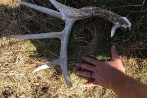 Trophy KS Whitetails with Income in Wabaunsee, KS (32 of 34)
