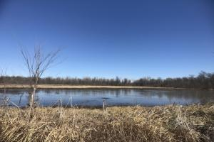 St. Paul Waterfowl and Whitetails