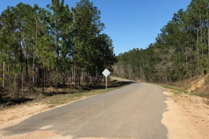 Earlville Road Investment Tract B in Mobile, AL (5 of 13)