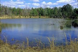 CR 65 Hunting & Fishing Investment - Perry County AL