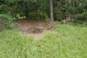 <p>Land for sale in AL,Hunting land for sale in AL,Timber land for sale in AL&nbsp;</p>
