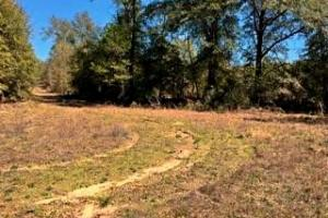 Spotlight Road Investment Tract
