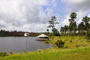 Southern Hunting Plantation in the heart of the MS Gulf Coast - Hancock County MS
