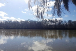 Mollett Bend River Retreat - Dallas County AL