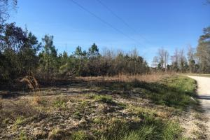 Finklea Home Site Lot 1 - Horry County SC