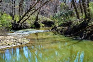 Little New River Recreation Tract - Marion County AL