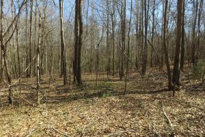 HWY 20 Development Opportunity - Anderson County SC