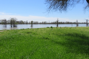 Wolf Lake getaway lot - Yazoo County MS