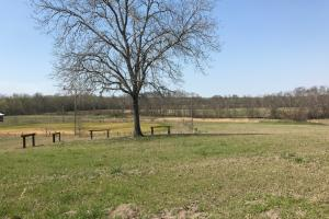 Buttahatchee River Horse Farm - Lamar County AL