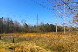 Hartsville Small Acreage Homesite