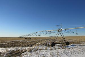 Irrigated Farm Land For Sale - Kit Carson County, CO