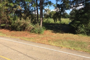 40 Acres old field with timber in Forrest, MS (2 of 3)