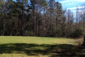 19 acres on Black Creek near Bassfield - Marion County MS