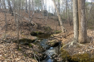 Taxahaw Hunting and Recreation Land - Lancaster County SC