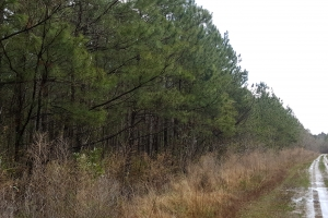 Pender County, NC