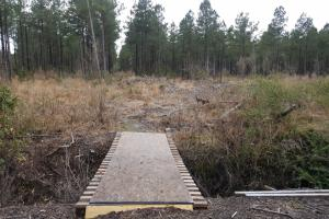Private Hunting and Recreational with Timber Investment - Pender County NC