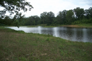 CR 90 Woods and Water - Chickasaw County MS
