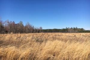 Duford Secluded Home Site Lot 7