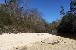 48 acres on Black Creek with Sand Bar - Forrest County MS