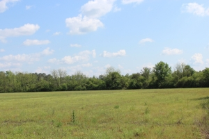 Woods Road Tract - Lowndes County MS