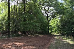 Jackson Homesite Hunting and Recreational Tract