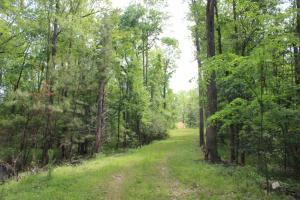 Land for Sale in South Carolina