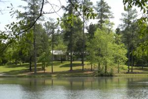 Brierfield Estate on Little Cahaba River - Bibb County AL