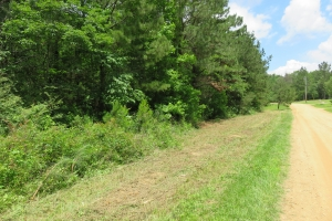 4.98 AC wooded lot - Hinds County MS