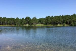 Land for Sale in Alabama