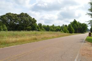 Austin Road Wooded and Pasture Land - DeSoto County MS