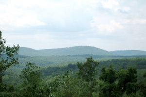 Timber Investment & Recreational Tract - Blount County AL