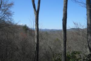 Panoramic Views on Trout Stocked East Fork - Transylvania County NC
