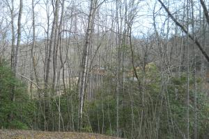 <p>View of main house from the cabin; privacy just a short walk away! Separate driveway or you can drive past the main house.</p>