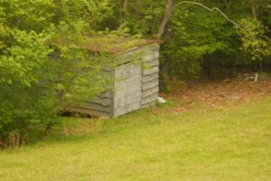<p>10'x10' shed has new roof</p>