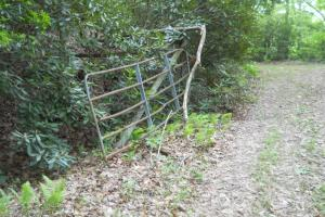 <p>Gate marks the other property boundary on the highest side of the property</p>