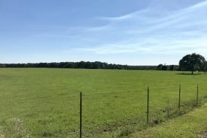 The Wilmer Farm Development or Homesite Investment  - Mobile County, AL