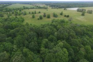 Catoma Creek Hunting, Timber, and Farming - Montgomery County AL