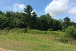 55 Acres Development Property - Jackson, MS - Hinds County MS